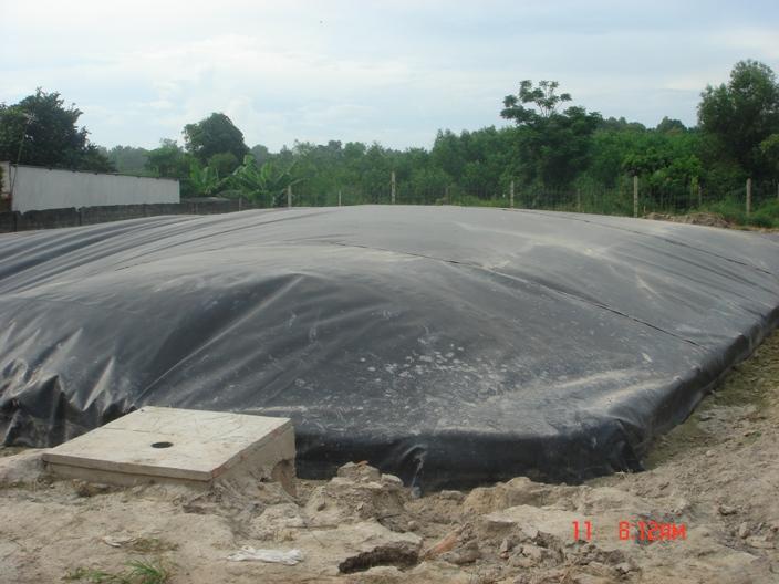 Ngày 1/10/2010 Công ty cổ phần chăn nuôi Phú Sơn đã nghiệm thu đưa vào sử dụng hệ thống xử lý nước thải tại trại gà Phú Sơn thuộc ấp Tân Cang, xã Phước Tân, Long Thành (nay là thành phố Biên Hòa).